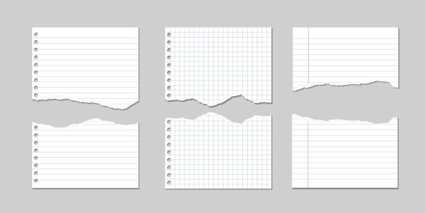 set of vector illustrations of torn pages of notebook paper lined and square with shadows - school background stock illustrations