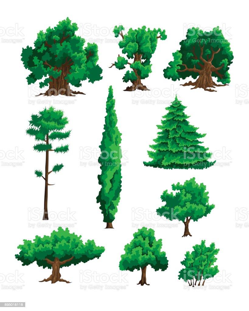 Set of vector illustrations of trees vector art illustration