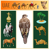 Set of vector images animals and objects on the theme of the United Arab Emirates. Vector illustration in realistic style