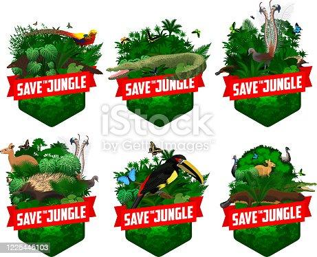 set of vector jungle rainforest emblem with red kangaroo, Lyrebird, Echidna, saltwater crocodile, golden pheasant, pangolin, platypus, ostrich Emu, cassowary, aracari toucanet and morpho butterflies