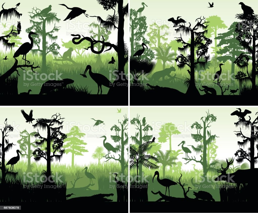 set of vector rainforest wetland silhouettes in sunset design template with animals vector art illustration