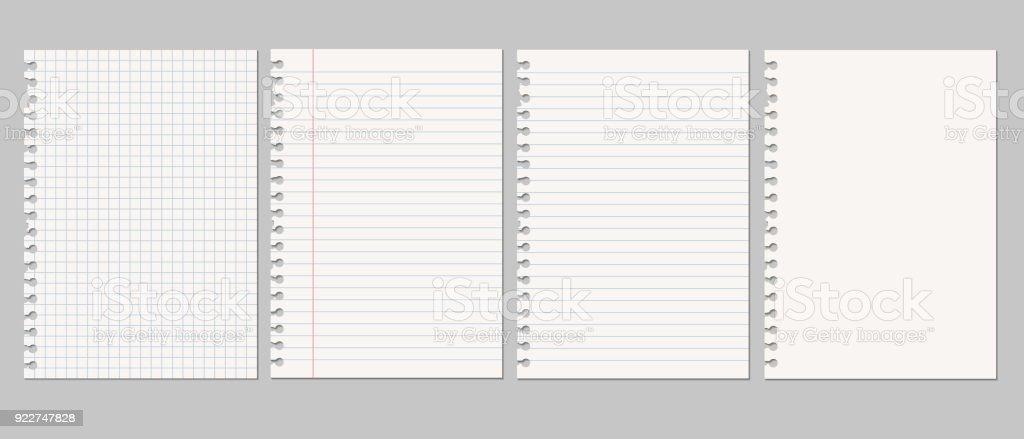 Conjunto de vector ilustraciones realistas de una hoja rasgada de papel de un libro con sombra, aislado sobre un fondo gris ilustración de conjunto de vector ilustraciones realistas de una hoja rasgada de papel de un libro con sombra aislado sobre un fondo gris y más vectores libres de derechos de blanco - color libre de derechos