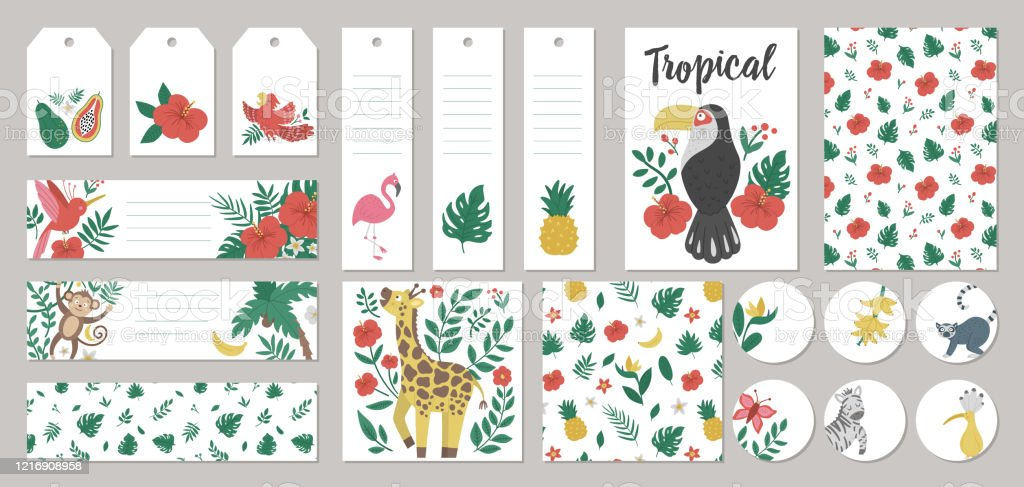 Set Of Vector Summer Gift Tags Labels Premade Designs Bookmarks With Tropical Animals Plants Flowers Fruit Funny Exotic Card Templates With Cute Jungle Characters Stock Illustration Download Image Now Istock