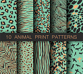 Set of vector turquoise animal print patterns. Collection of tiger, birds, zebra and leopard prints. For fabric, textile, wrapping, cover, banner etc.