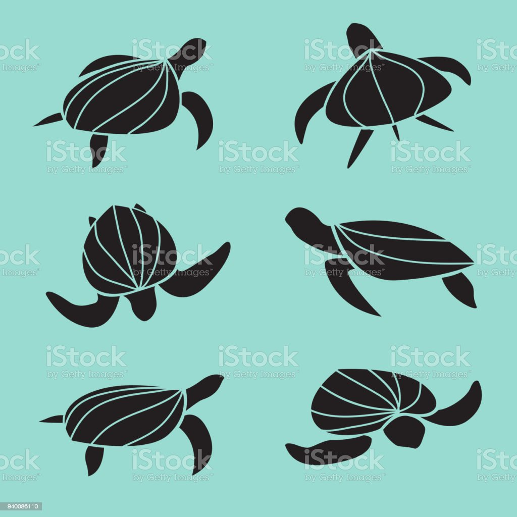 Set of vector turtle isolated on blue background. Animal. Reptile....