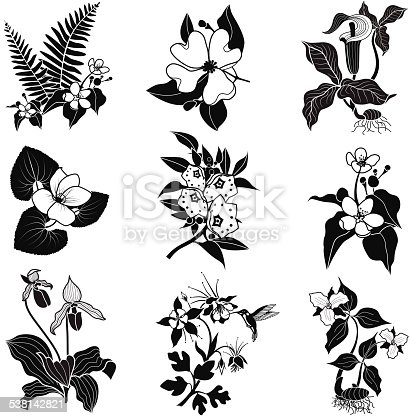 A vector illustration of a set of woodland flowers in black and white. An EPS file and a large jpg are included in this download.
