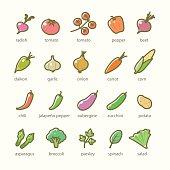Vector flat illustrations of  food