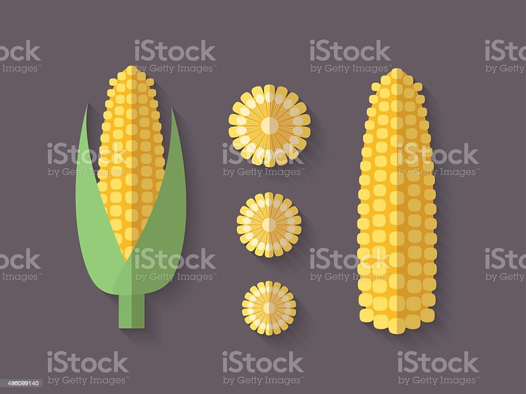 Set of Vegetables in a Flat Style - Corn vector art illustration