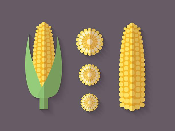 satz von gemüse in einer flachen stil-corn - mais stock-grafiken, -clipart, -cartoons und -symbole