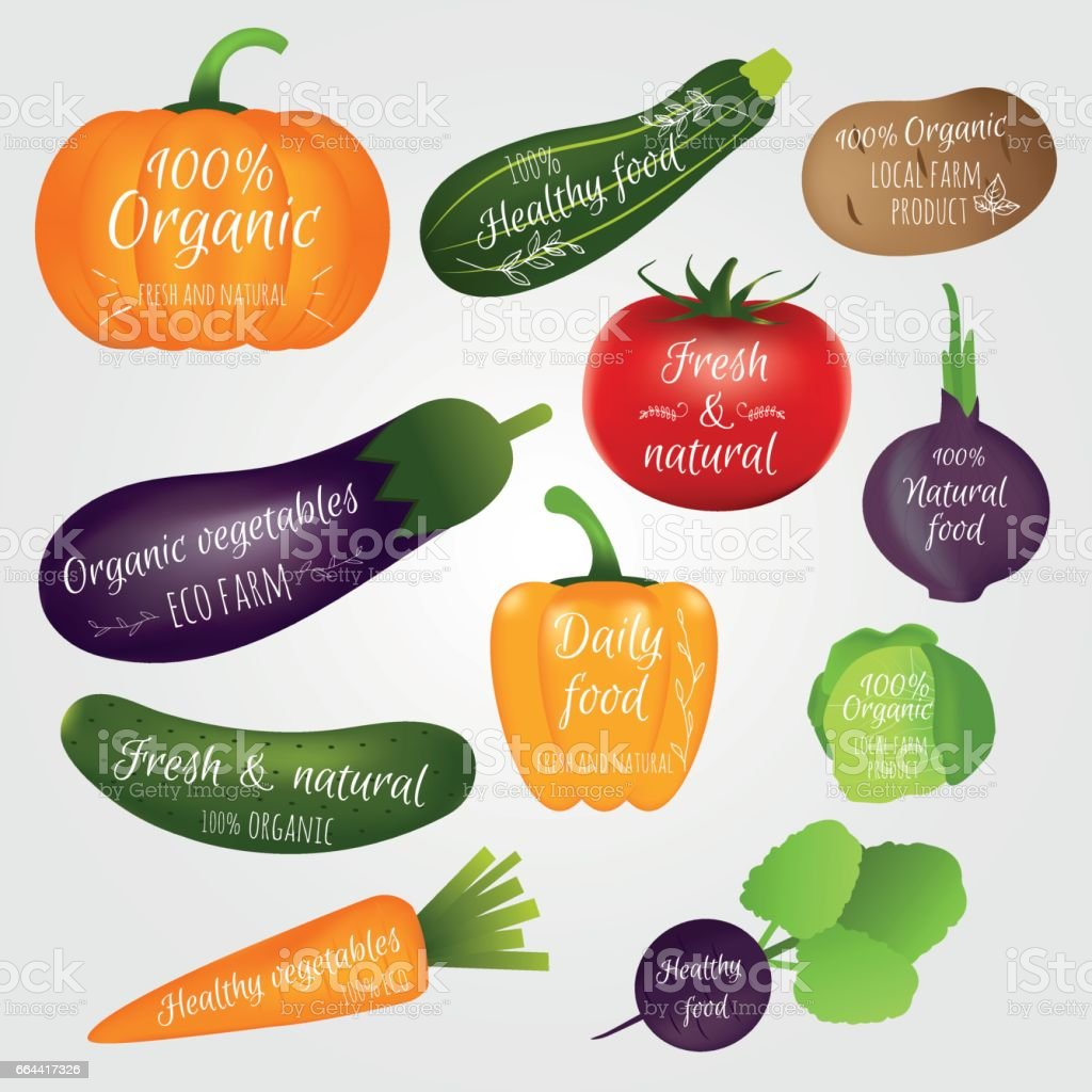 Set of vegetables labels with sample text. Collection of realistic icons for groceries, agriculture stores, local market, farm, eco products, packaging and advertising. vector art illustration
