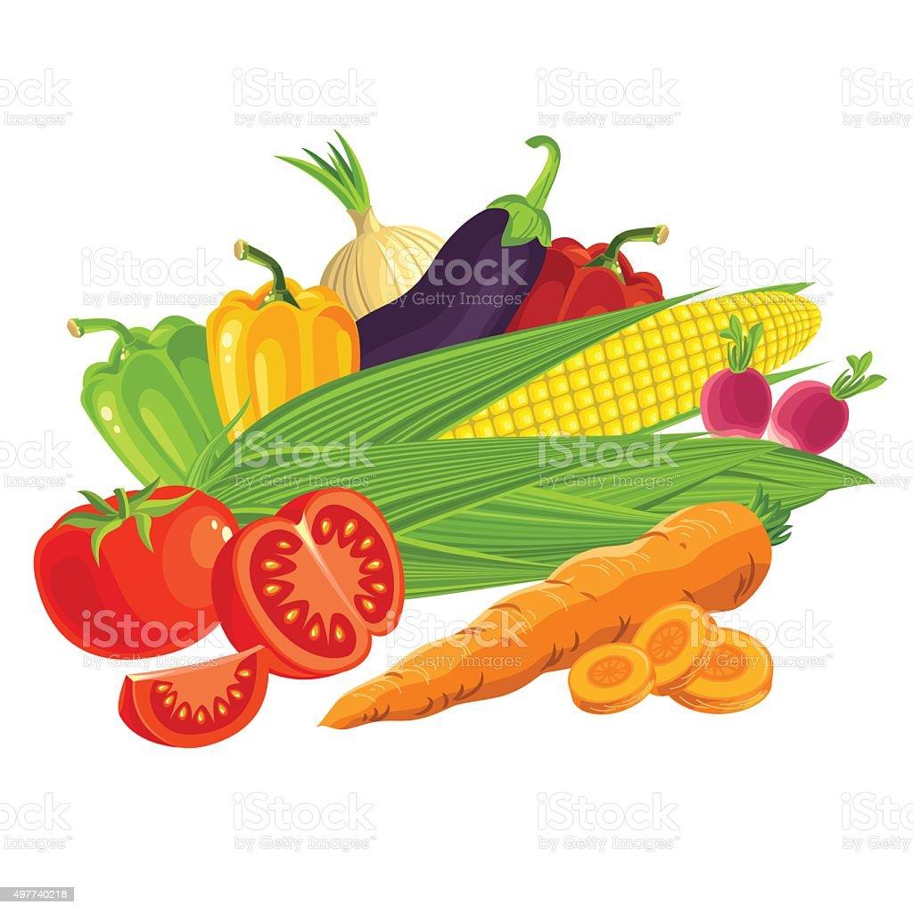 Set of vegetables. vector art illustration