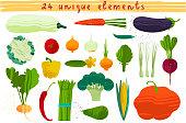 Set of vegetables. Vector illustration of healthy food design on the topic of vegetarianism and farm fair. Vegan menu