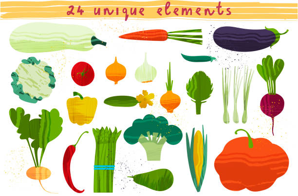 Set of vegetables. Vector illustration Set of vegetables. Vector illustration of healthy food design on the topic of vegetarianism and farm fair. Vegan menu agricultural fair stock illustrations
