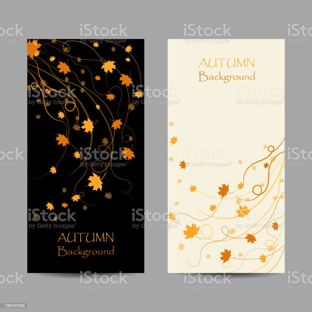 Set of vertical banners. Autumn maple leaves on white and black backgrounds. Vector illustration vector art illustration