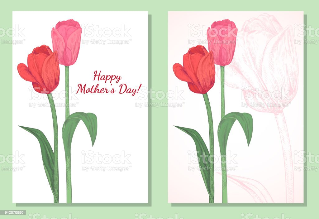 set of vertical template card for design with tulips red pink