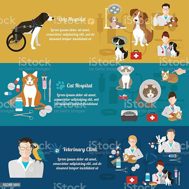 Set of vet clinic banners pet care flat design vector id532851650?b=1&k=6&m=532851650&s=612x612&h=lwd6eff6xruwmsdkhmkvwxc4yjii a  y0qvf ie wa=