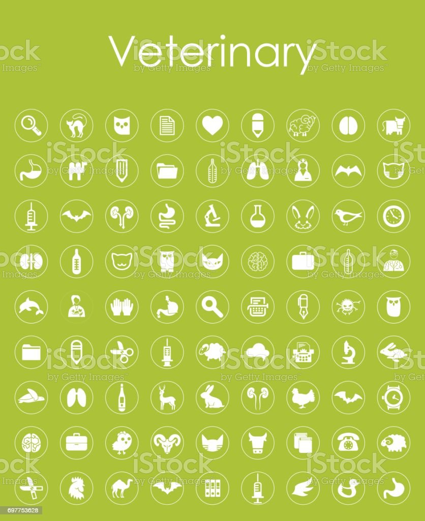 Set of veterinary simple icons vector art illustration