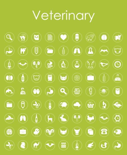 set of veterinary simple icons - veterinarian stock illustrations, clip art, cartoons, & icons