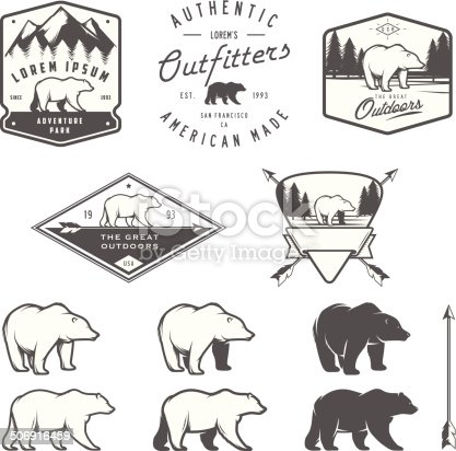 Set of vintage bear icons, emblems and labels.