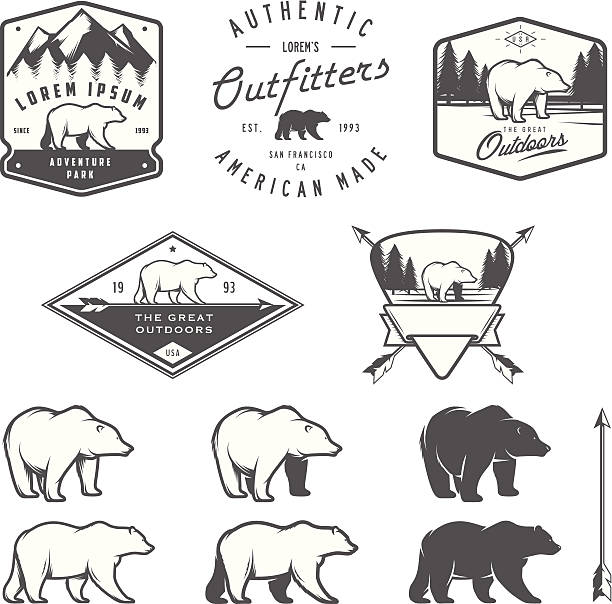 set of vintage bear icons, emblems and labels - bear stock illustrations, clip art, cartoons, & icons