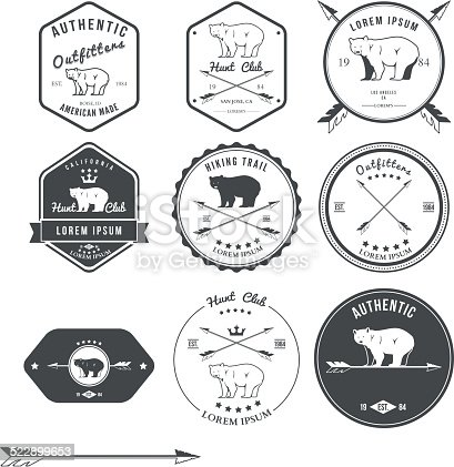 Set of vintage bear icons, emblems and labels. Vector illustration