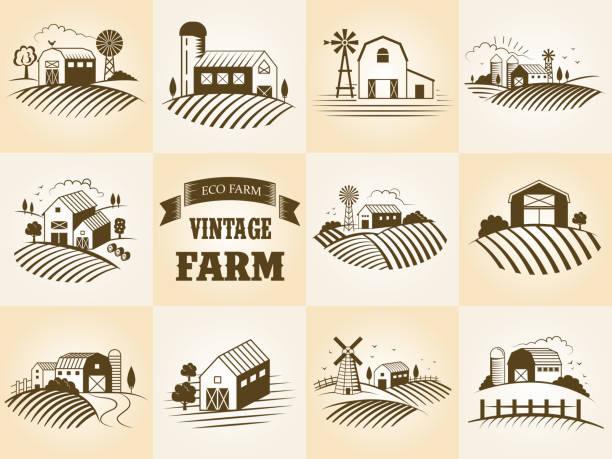 vintage eko çiftlik etiketi, manzara, binalar, fileds ayarlayın. retro gravür tarzı vektör illüstrasyon. - rüzgar değirmeni stock illustrations