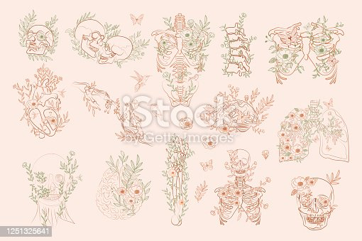 istock Set of Vintage Floral Anatomy elements 1251325641