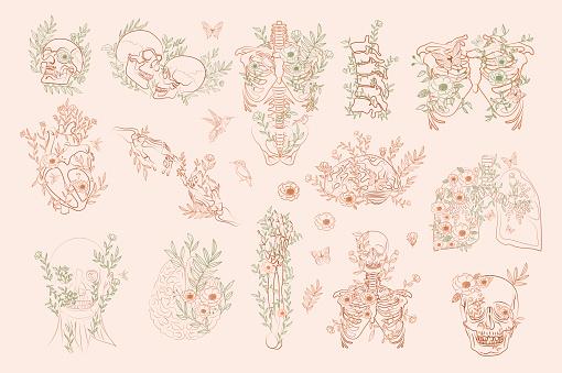 Set of Vintage Floral Anatomy elements