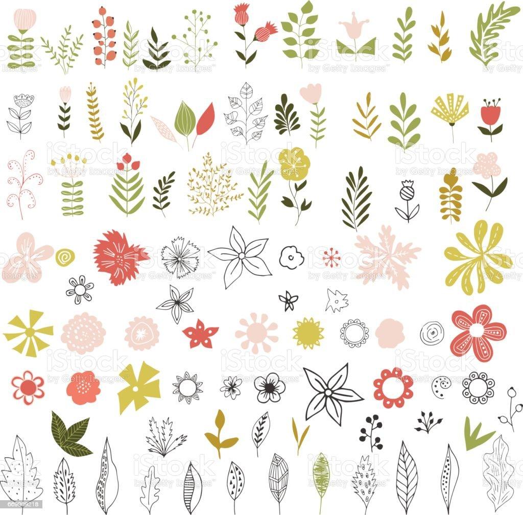 Set of vintage flowers, herbs and leaves. vector art illustration