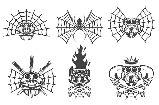 Set of vintage hand drawn composition with spiders isolated on white background. Design concept for tattoo, print, banner, badge in old school style. Vector illustration.