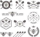 Set of vintage honey design elements on white