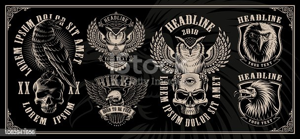 Set of vintage illustrations of birds with owl, eagle, raven and vulture on the dark background. Layered, text is on the separate group.