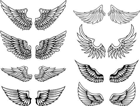 Set of vintage vector wings. Design elements for label, emblem, sign, poster, t shirt. Vector illustration