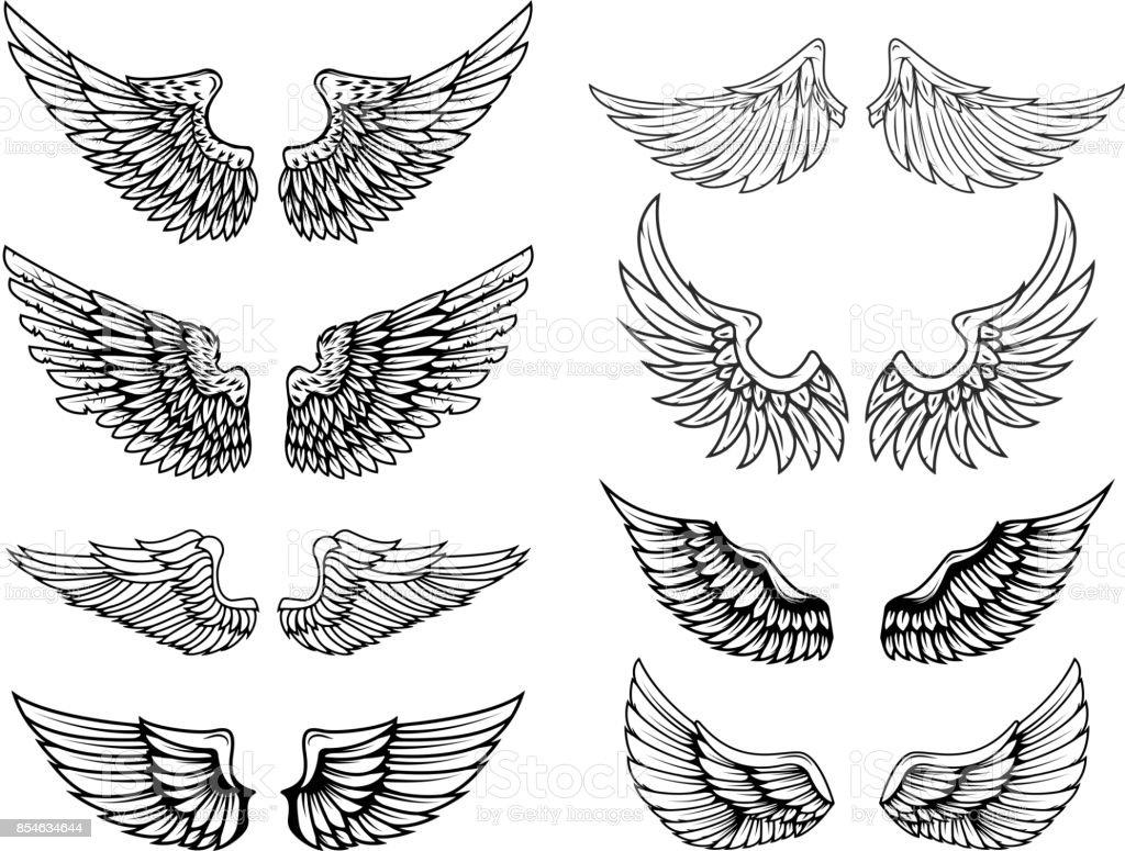 Set de alas de vectores vintage. Elementos de diseño de etiqueta, emblema, signo, cartel, camiseta. Ilustración de vector - ilustración de arte vectorial