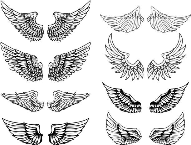 ilustraciones, imágenes clip art, dibujos animados e iconos de stock de set de alas de vectores vintage. elementos de diseño de etiqueta, emblema, signo, cartel, camiseta. ilustración de vector - tatuajes de ángeles