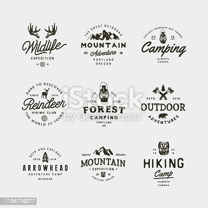 set of vintage wilderness icons. hand drawn retro styled outdoor adventure emblems, badges, design elements, icontype templates. vector illustration
