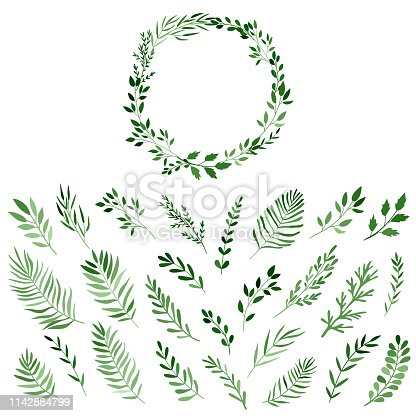 set of watercolor branches for the design of wreaths, vector isolated on white