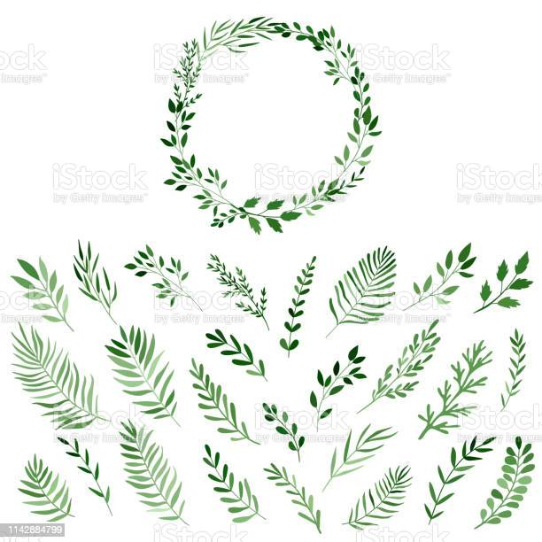 Set of watercolor branches for the design of wreaths vector isolated vector id1142884799?b=1&k=6&m=1142884799&s=612x612&h=woy89cdm6u9wotp0e hxeyqnyv8rnizxezkiolwutlw=