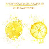 Seto of watercolor lemon vector illustration. Splashed hand draw lemons isolated on white background, art vector citrus objects. Lemonades