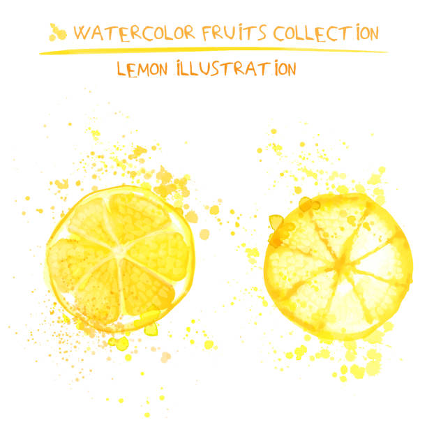 Set of watercolor lemon vector illustration. Splashed hand draw lemons isolated on white background, art vector citrus objects. Lemonade element Seto of watercolor lemon vector illustration. Splashed hand draw lemons isolated on white background, art vector citrus objects. Lemonades lemonade stand stock illustrations