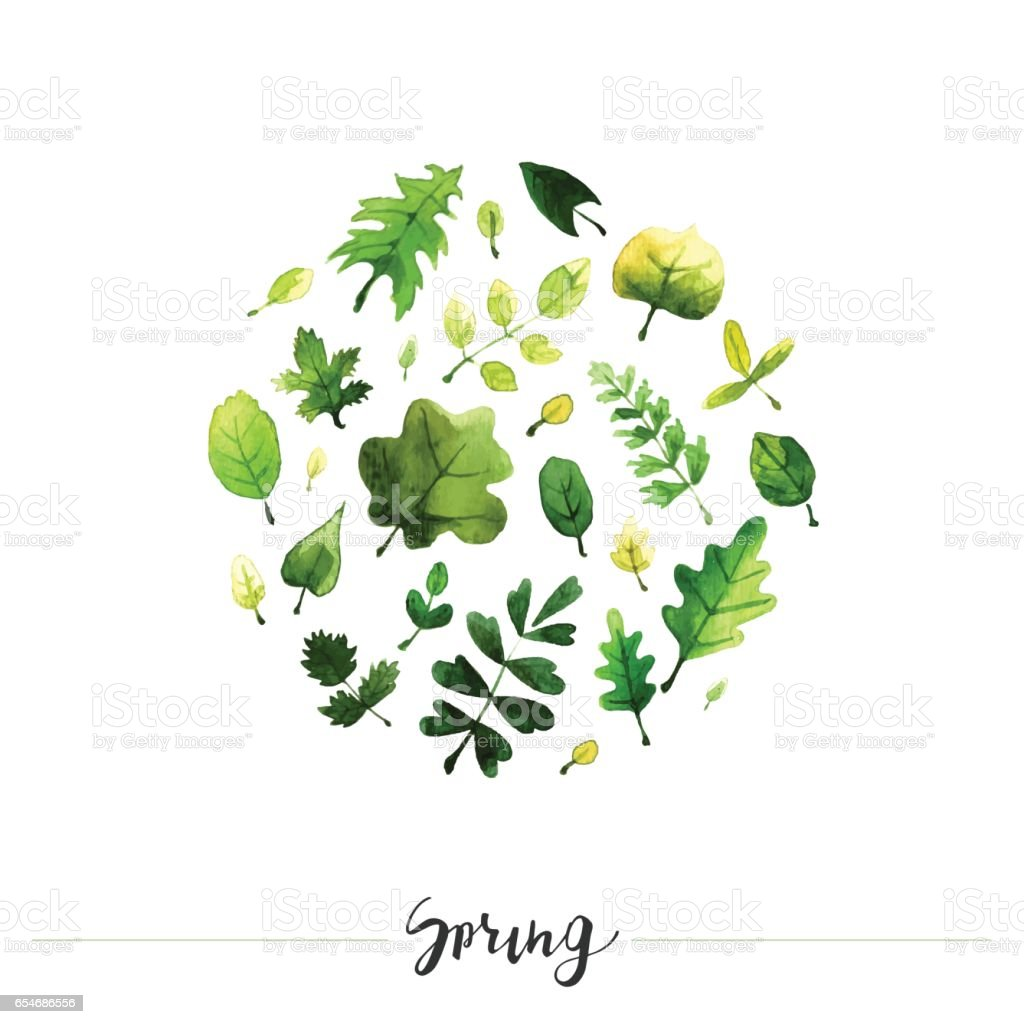 Set of watercolor vector leaves and branches in circle perfect set of watercolor vector leaves and branches in circle perfect floral element for save the stopboris Images