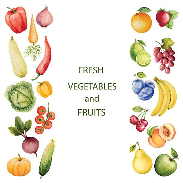 Set of watercolor vegetables and fruits. Set of watercolor vegetables and fruits.Template for your design. Vector illustration. squash vegetable stock illustrations