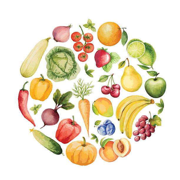 一連の水彩野菜や果物ます。 - 野菜点のイラスト素材/クリップアート素材/マンガ素材/アイコン素材