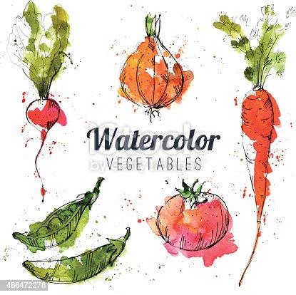 istock Set of watercolor vegetables 466472278