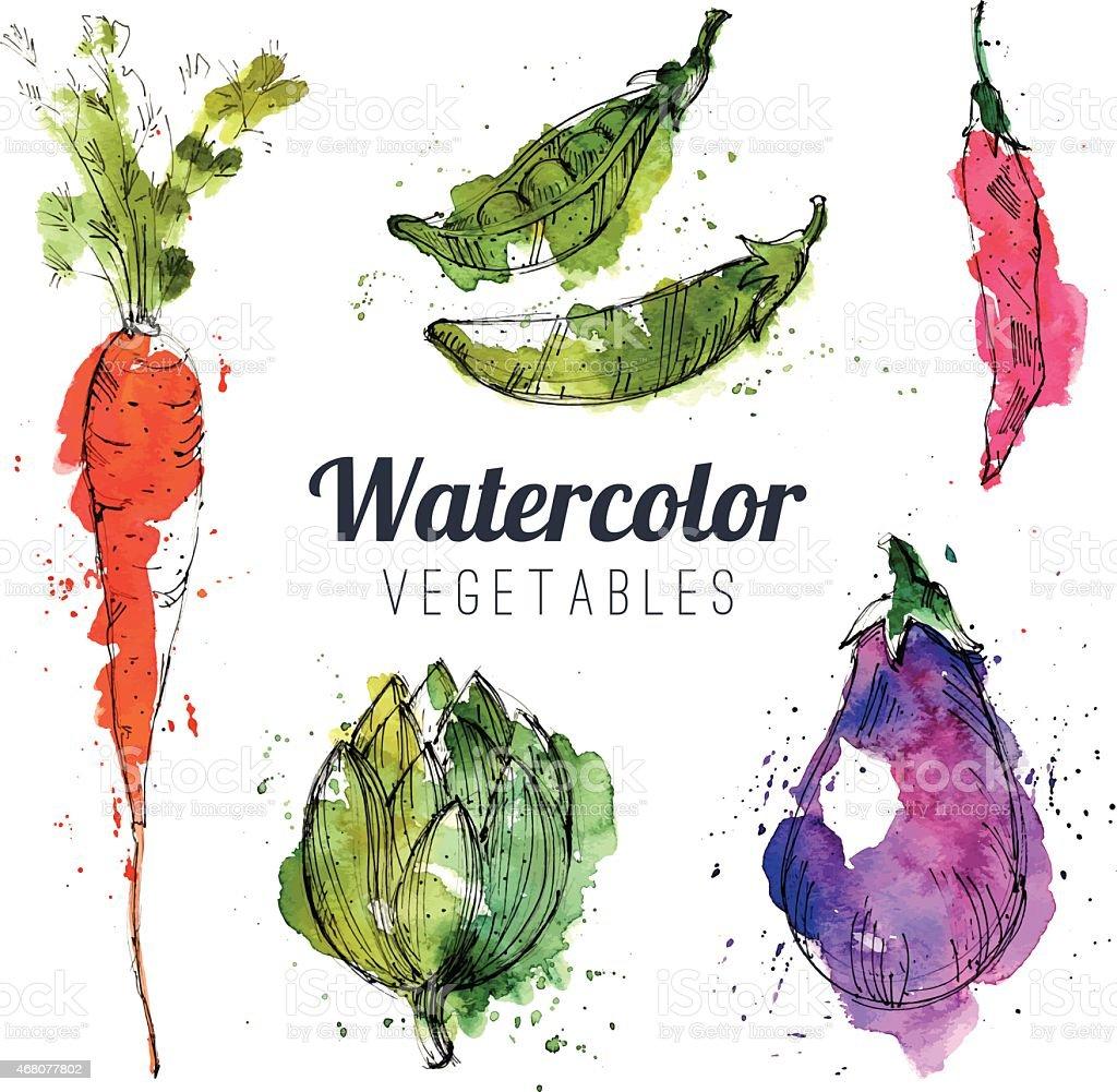 Ensemble de légumes Aquarelle - Illustration vectorielle