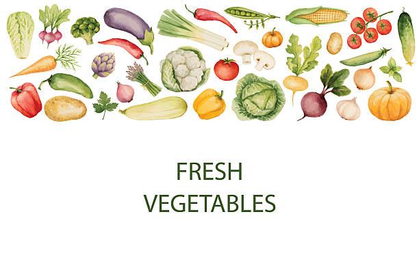 一連の水彩野菜ます。 - 野菜点のイラスト素材/クリップアート素材/マンガ素材/アイコン素材