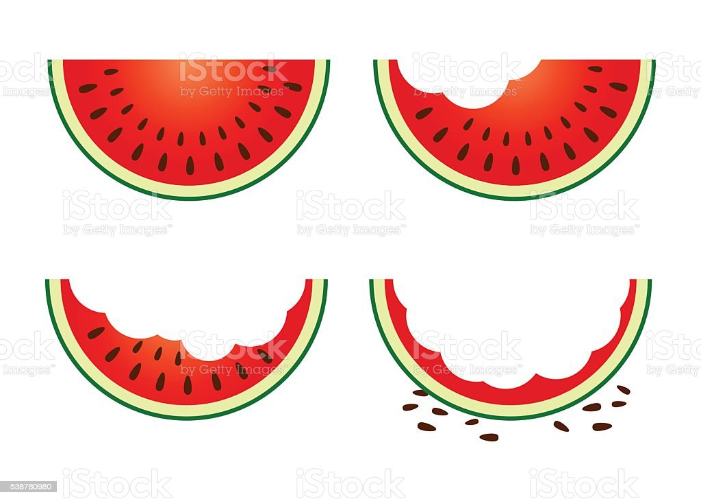 Set of Watermelon Fruit Eating Stage vector art illustration