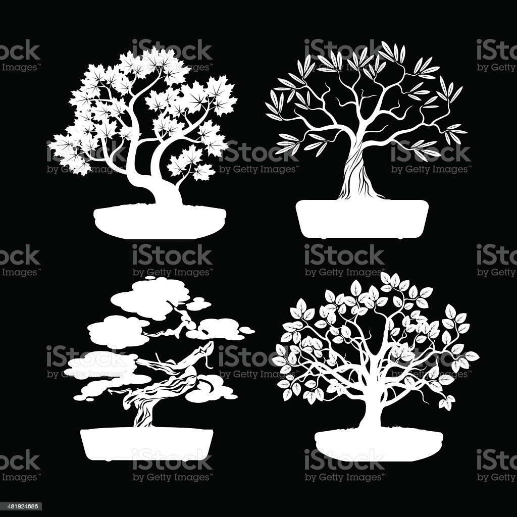 Set of White Bonsai Trees. vector art illustration