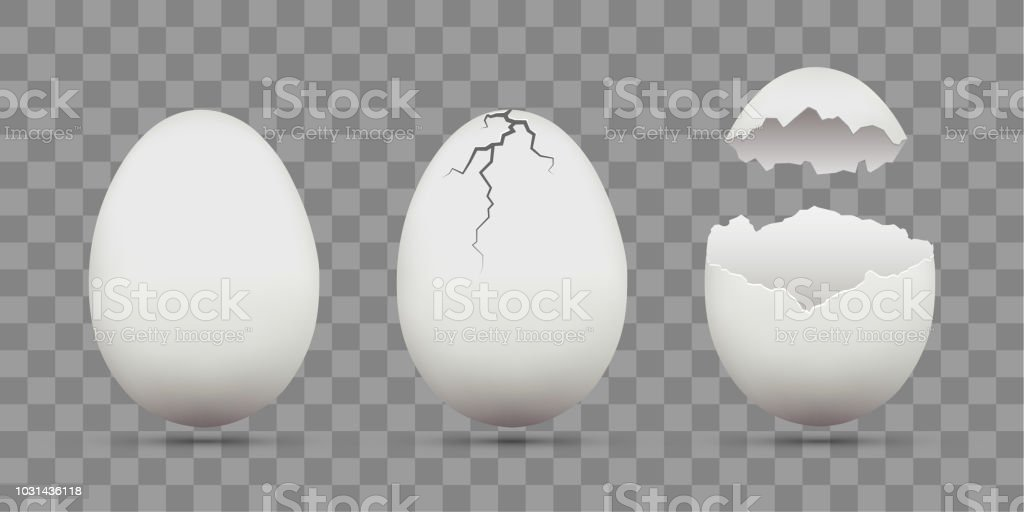 Set of white chicken eggs. Shell with cracks. Isolated on a transparent background.