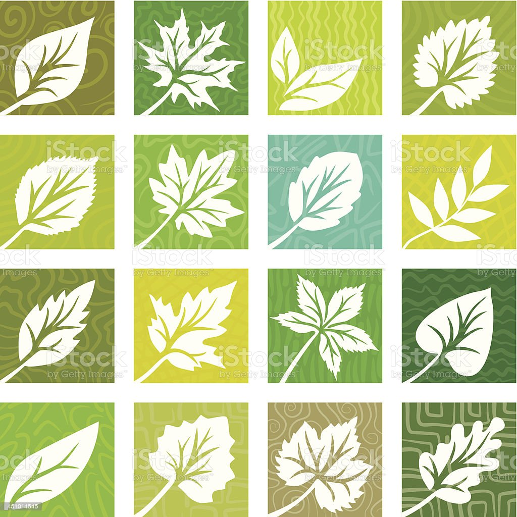 A set of white leaves in different colored squares vector art illustration
